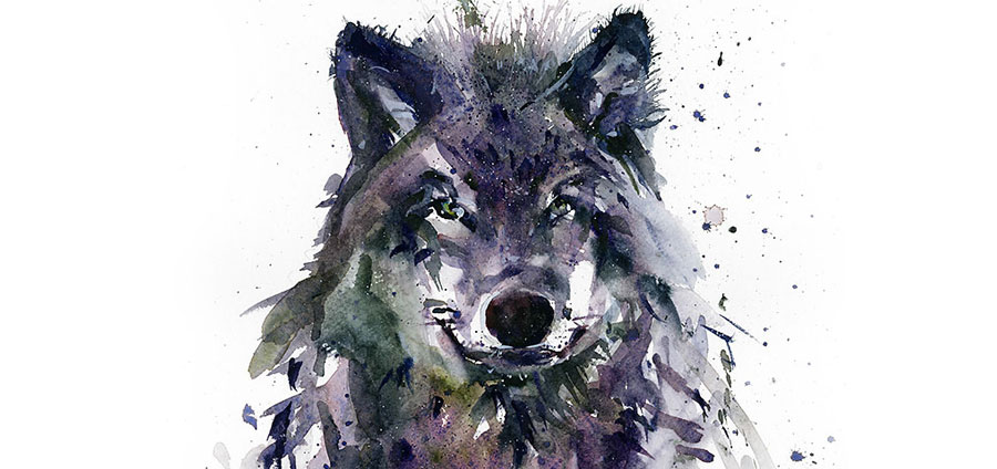 Wolf-wildlife
